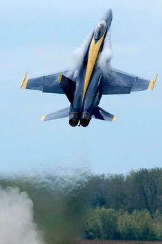 Blue Angels F-18 Hornet goes vertical!