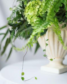SpireDesigns — Every little sprig & snip makes me so happy!...