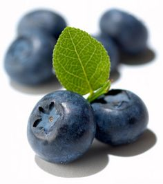The 30 Healthiest Fruits On Earth -- The Ultimate Fruit Health Rankings - Lean It UP Blueberries Nutrition, Frozen Blueberries, Frozen Yogurt, Greek Yogurt, Healthy Fruits, Fruits And Veggies, Blueberry Farm, Blueberry Picking, Blueberry Compote