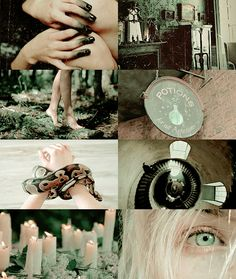 pvffskein:   hogwarts aesthetics - slytherin...