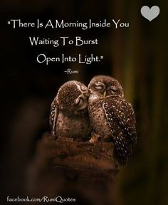 """""""There Is A Morning Inside You Waiting To Burst Open Into Light."""" ~Rumi"""