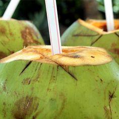 Kokoswater is gezond! Benieuwd naar de voordelen van kokoswater? Bekijk dan deze blog!   #health #drinks #coconut #healthy #love