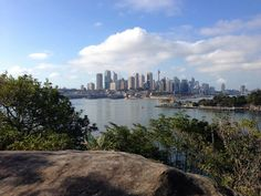 4 Sydney Coastal Walks: Sydney's Coastline And Harbor Represent One Of The Most Beautiful And Environmentally Diverse Attractions In The World.