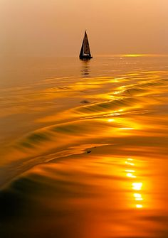 "djferreira224: "" Silence is golden """