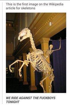 The Skeleton Army rides again! See more images on Know Your Meme!