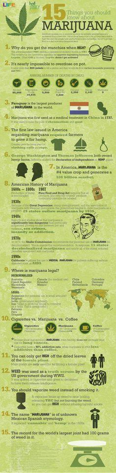 10 best Da Bud images on Pinterest | Cannabis growing, Hydroponics and Marijuana plants