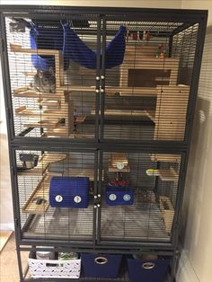 *Updated* Chinchilla Mansion! Featuring Jaxson :) Cage: Critter Nation. Wood: Kiln dried pine (my boyfriend made all the ledges & hideouts himself). Fleece Accessories: My Critter Store. Toys: Chinchilla City, PetSmart, Amazon. We use tile (From Home Depot) for the bottom flooring. Keeps our chin cool & much easier to clean.