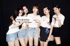 Red Velvet's North American Tour - Sexy K-pop Seulgi, Red Velvet Irene, Black Velvet, Kpop Girl Groups, Kpop Girls, American Tours, Kim Yerim, Jiyong, Latest Pics