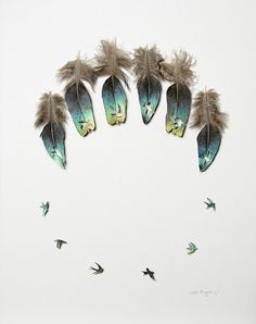Feathers, Form and Function: New Cut Feather Artwork by Chris Maynard