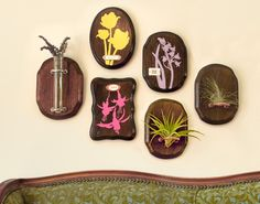 <p>A silhouette of springtime tulips to enjoy in winter, an airplant perch, and a glass tube vase—a little vintage, a little rustic, these three wooden plaque projects would be at home in a Victorian sun room or a woodland lodge. </p>