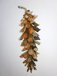 Winter Pinecone Giclee Print in Pen and Ink and Watercolor in umber, sepia, rust, black, gray, Botanical Print