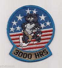 F-14 TOMCAT 3000 HOURS - Grumman Style