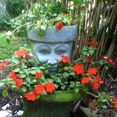 Pot head. Face/head pots are my favorite in the garden