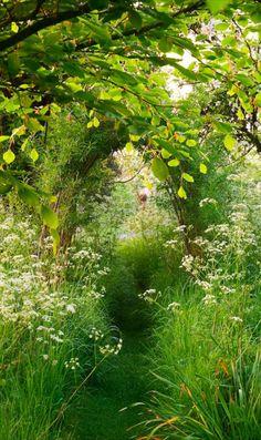 Wiltshire, Englandphoto via maddy