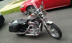 HARLEY DAVIDSON 2005 883 SPORTSTER XL - 2005 Harley Dvidson 883 Sportster XL 4600 mil... #ReferLocal