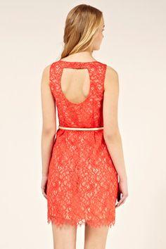 Lily lace dress back