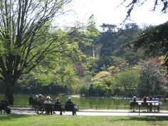 In Pictures and Profiles: 10 Truly Elegant Parisian Gardens: Parc Montsouris in South Paris