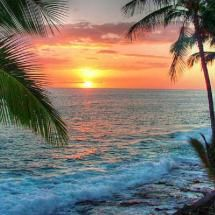 Beautiful Tropical Sun