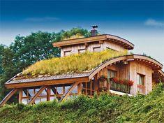 Dachbepflanzung - Nicht nur Flachdächer machen Gänseblümchen