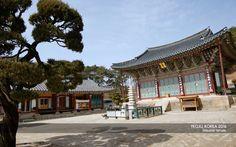 Beholder DS1 at Silleuksa Temple, YEOJU, KOREA 2016 | 경기도 여주 신륵사 [京畿 驪州 ...