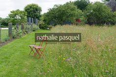 Jardin champêtre : prairie fleurie. Jardin du Perdrier. Paysagiste Jean-Charles Chiron