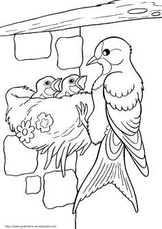 , Bird Coloring Pages, Coloring Sheets For Kids, Coloring Pages For Kids, Coloring Books, Bird Drawings, Colorful Drawings, Drawing For Kids, Art For Kids, Vogel Quilt