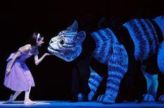 David H Koch Theater at Lincoln Center New York, NY - Alice's Adventures in Wonderland - Ballet - tickets, information, reviews