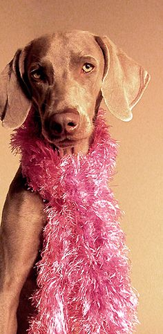 ♥ mukha pink ♥ by saikiishiki, via Flickr