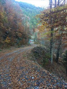 Trail Olympos mountain  Greece
