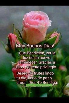 Good Morning Prayer, Good Morning Funny, Good Morning Messages, Good Morning Greetings, Morning Prayers, Good Morning Good Night, Morning Wish, Good Morning Quotes, Motivational Phrases