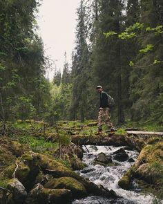 Ylläs | aktiiviloma | patikointi | luontoloma |varkaankuru
