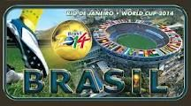 fifa world cup 2014 - Google Search