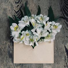 Flowers in envelopes, for the favors table