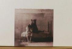 «Κι ο χρόνος να λογίζεται Μινώταυρος» ____________________ Γράφει η Χριστίνα Κόλλια #book #review #vivlio  http://fractalart.gr/o-grafias/