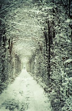 Tunnel of Love in winter