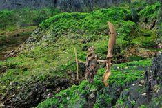 2008年 #流木オブジェ ー9 ★ ここは潮が引いた後の海岸です。 ★   #流木 #流木アート #屋久島 アート #インテリア #Driftwood Art #Interior