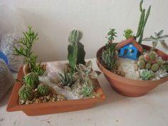 Como fazer um mini jardim decorativo 002