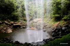 Cachoeira do Salto Ventoso, Farroupilha/RS   cenário do filme O Quatrilho (1994) e da minisérie O Quinto dos Infernos (2002)   #farroupilha #serragaucha #riograndedosul #brasil #brazil
