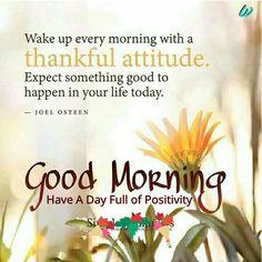 Good morning whapp