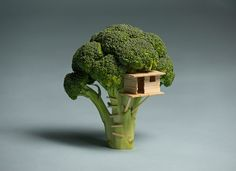 """beconinriot: """"Brock Davis """"Broccoli House"""" I wasn't able to build my son a treehouse, so I built him this broccoli house instead. Made with balsa wood. """""""