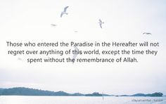 paradise dwellers