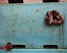 Crime scene! #crimescene  #crime #norway #norge #visitnorway #discovernorway #lofoten #lofotenislands #fish #fishing #fisherman #fishingvillage #stockfish #codfish #dryfish #food #fishhead #sea #seafish #seafood #food #blood #bloody #massacre #detail #details
