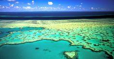 """Admirer """"The heart reef""""  I #Australie I"""