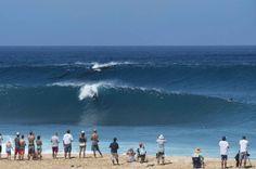 Una mamma balena e il suo piccolo sono apparsi a pelo d'acqua a pochi metri dalla riva, mentre cavalcano le onde. L'insolito spettacolo è avvenuto nel paradiso del surf, la North Shore dell'isola di Oahu, nelle Hawaii, dove i migliori riders del mondo si danno appuntamento per surfare, nella