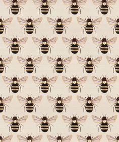 Beetle & Butterfly Wallpaper