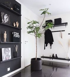 Godkväll finingar 🌿 Har precis dukat av middagen och torkat av i köket till podden @spoktimmen, älskar deras podd, sån himla bra mix!… Beautiful Interior Design, Nordic Design, Laundry Room, Sweet Home, House Ideas, Design Ideas, Shelves, Black And White, Home Decor
