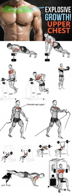 Speed up your lagging upper-chest development with these 7 strategies, tips, exercises, and techniques! Need help adding muscle to your upper chest? Check out these 8 tips and give the included workout with targeted upper chest exercises a shot for the ul Fitness Workouts, Weight Training Workouts, Gym Workout Tips, At Home Workouts, Training Plan, Strength Training, Aerobic Fitness, Model Workout, Gym Tips