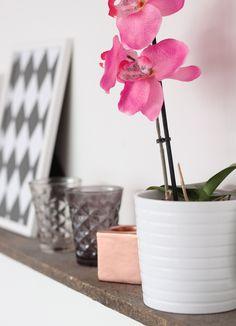 . Planter Pots, Living Room, Decoration, Plants, Pink, Design, Decor, Sitting Rooms, Living Rooms