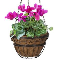 CobraCo HPI14-BZ 14-Inch Bronze Scroll Braided Hanging Basket