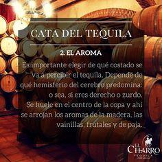 Cómo catar el tequila? #Tequila #Cata #Aroma #Oler